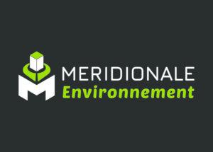 Méridionale Vert Meridionale Environnement Bloc Marque Largeur Fond Foncé