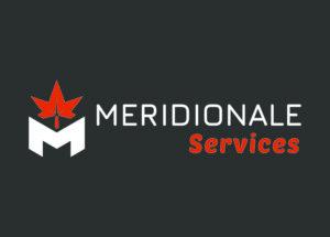 Méridionale Vert Meridionale Services Bloc Marque Largeur Fond Foncé