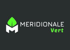 Méridionale Vert Meridionale Vert Bloc Marque Largeur Fond Foncé
